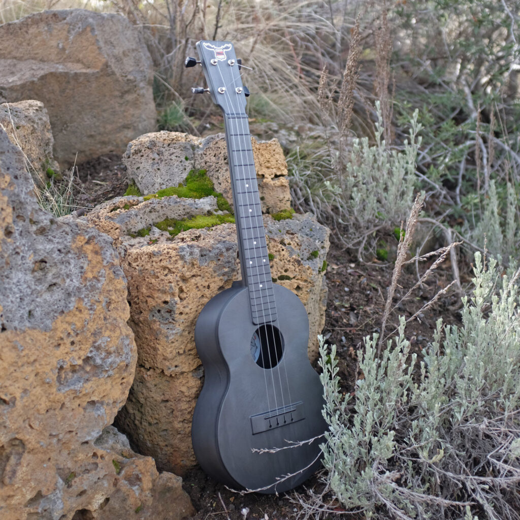 Outdoor_Ukulele